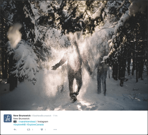 Photo of hikers obscured by interestingly highlighted snow falling from trees.