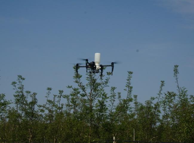 Distribuzione Polveri con drone