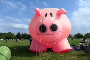 Das Schwein vom Team Aufwind Extrem