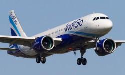 Avião Airbus A320neo IndiGo