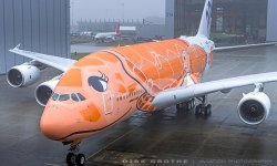 Avião Airbus A380 ANA Tartaruga