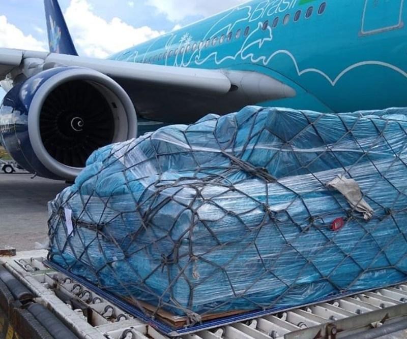 Azul Airbus A330 Transporte Equipamentos Hospital COVID-19