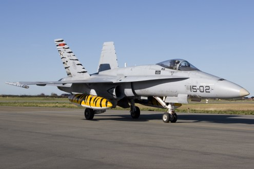© Anthony Osborne - F/A-18 Hornet • Tiger Meet 2007