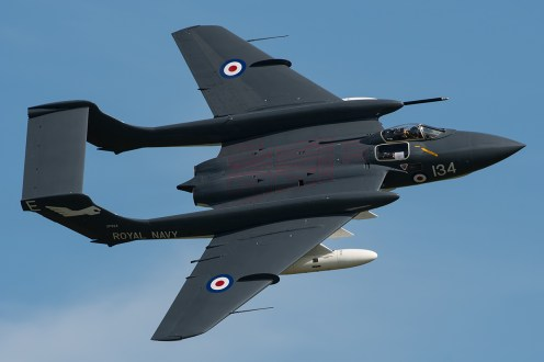 © Duncan Monk - Navy Wings Sea Vixen FAW2 G-CVIX XP924 - Duxford Air Festival 2017