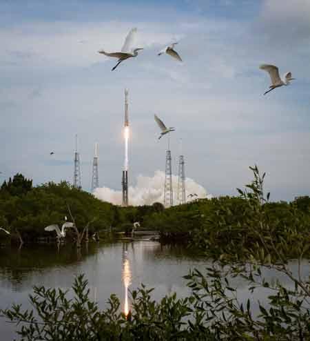 Atlas V Rocket - Is it a bird, is a plane or is it a rocket?