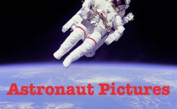 Astronaut Pictures - Astronauts in Earth Orbit, on the Moon and in Space