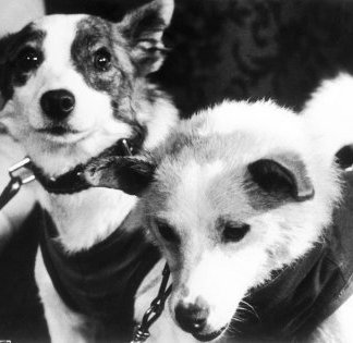 Space Dogs - Belka and Strelka