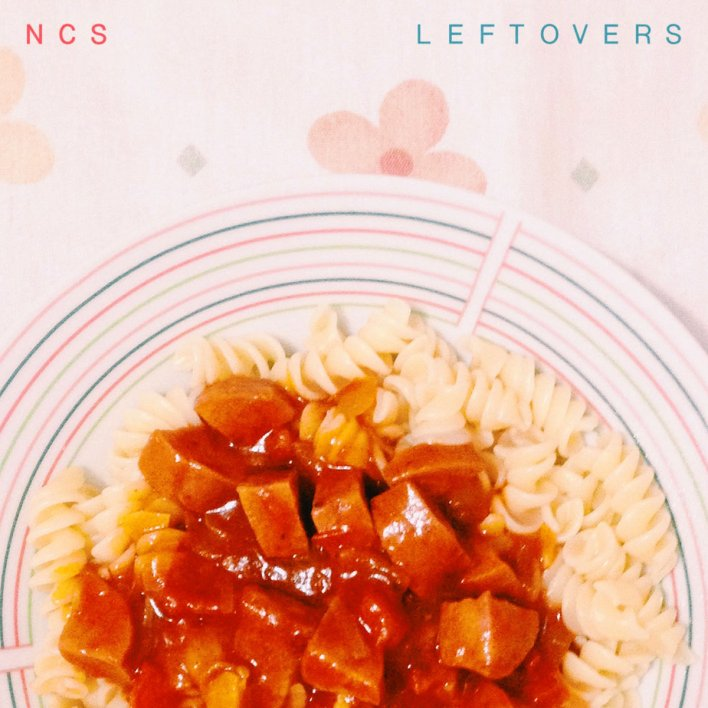 No Crowd Surfing - Leftovers