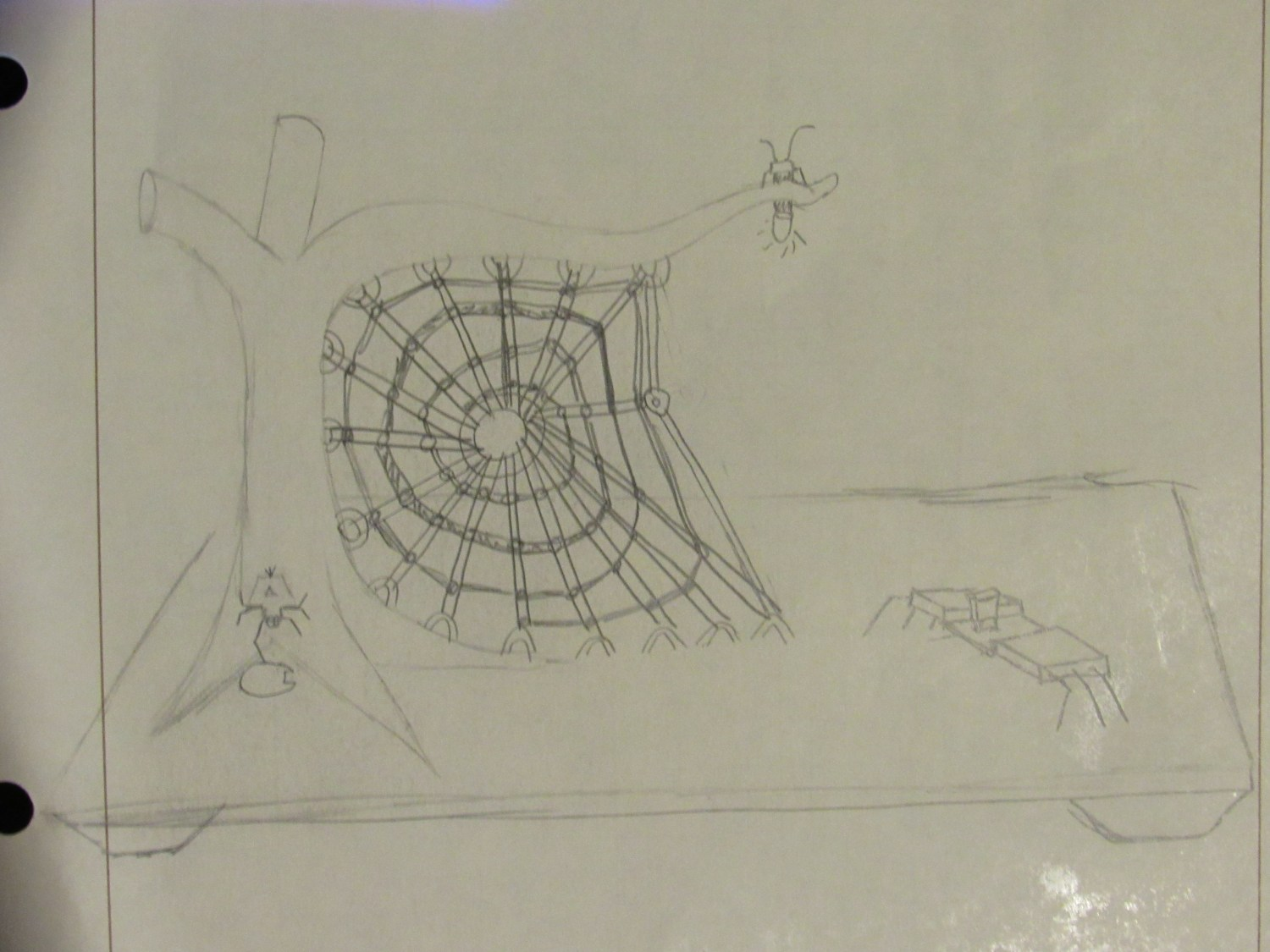 Figure 6; Initial Design Idea for placement of spiders and firefly.
