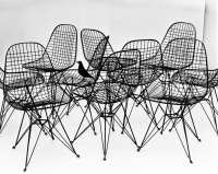 Aesthetica Magazine  The World of Charles and Ray Eames ...