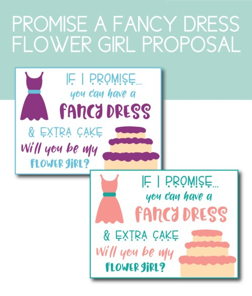 Fancy Dress with Extra Cake Flower Girl Proposal