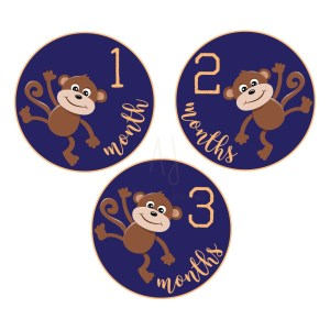 monkey baby milestone stickers