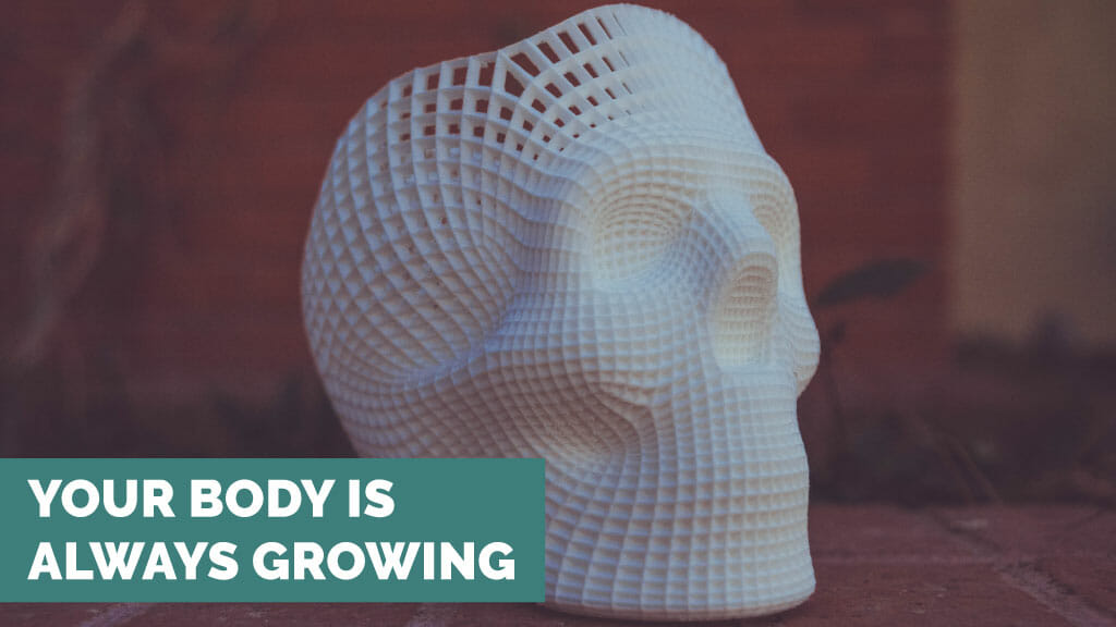 your body is always growing