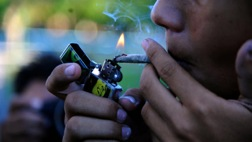 Think Pot is Harmless or Not Addictive?