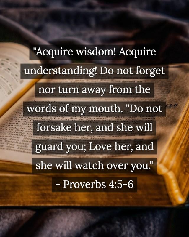Proverbs 4:5-6