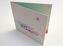 Obal - pošetka na DVD - Preciosa