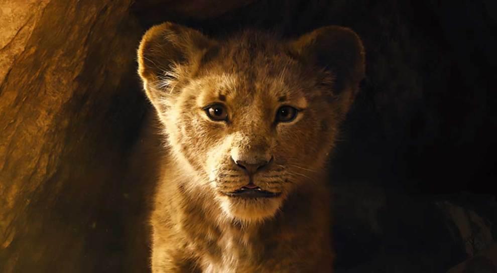 il re leone