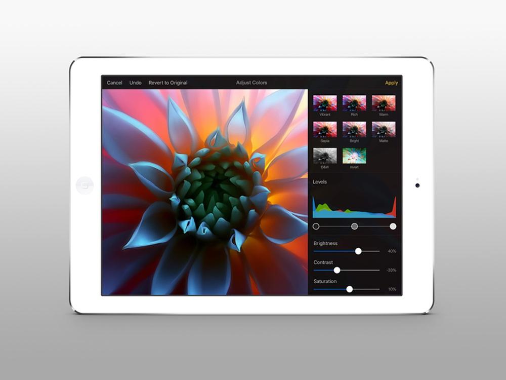 ios_app_pixelmator-ipad