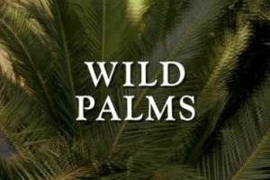 wildpalmslogo