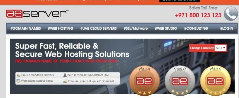 AEserve- Best Web Hosting Providers In Dubai UAE