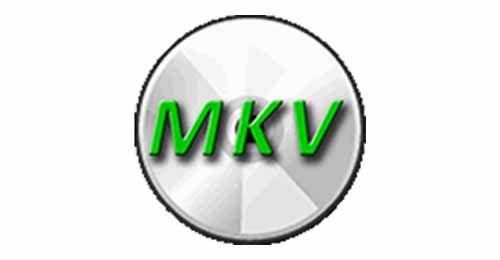 new mkv registration code