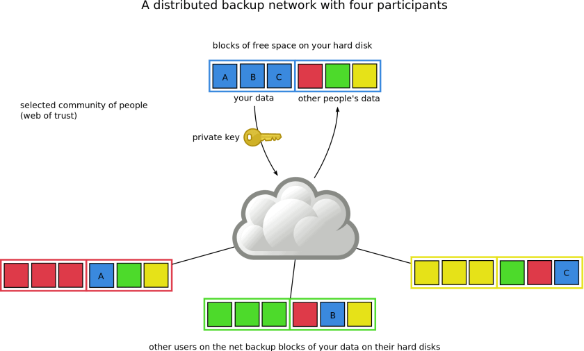 backup network with four participants