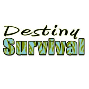 DestinySurvival Logo