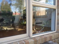 Dog Doors Melbourne | Affinity Glazing