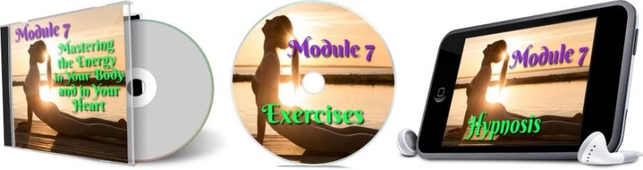 11 Days To Manifestation Mastery Program + 5 Free Bonuses  Image of module 7 combined