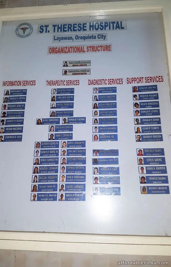 Hospital Organizational Chart Sample  Business 30434