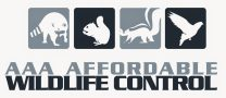 AAA Affordable Wildlife Control LOGO - Wildlife Removal Services Toronto