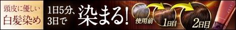HI-STEP(ハイステップ)