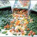 مشروع تجهيز الخضروات وتجميدها