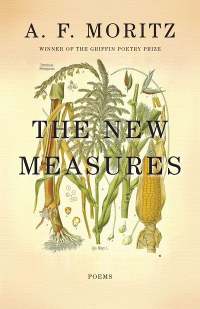 TheNewMeasures