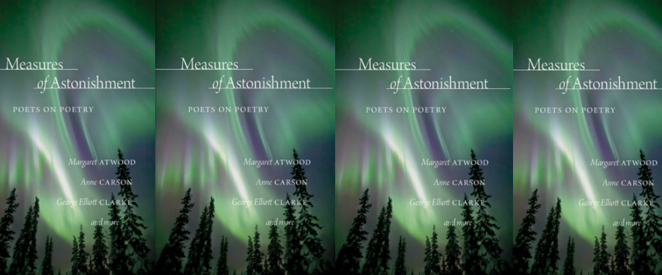 Measures of Astonishment Header
