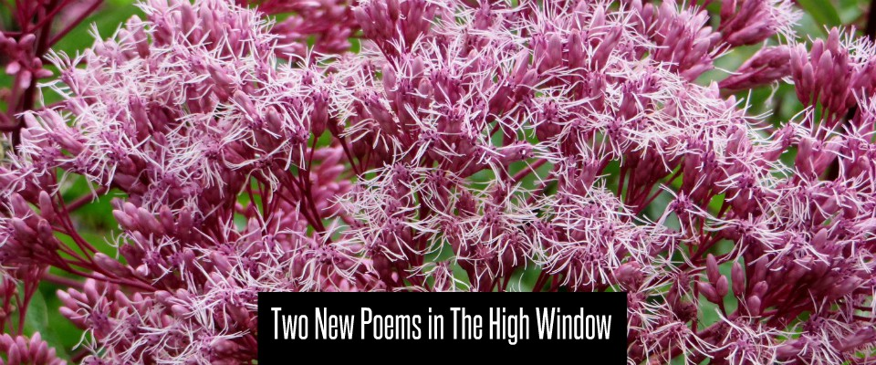 Two new Poems in the high window