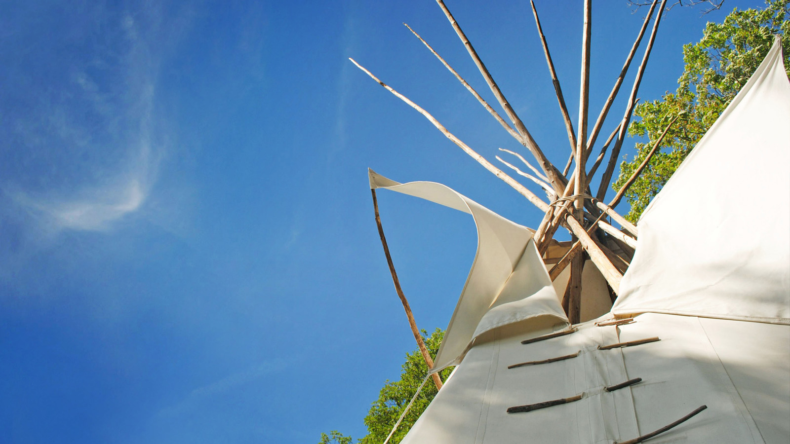 Assembly of First Nations Welcomes Court Ruling to Uphold Federal Carbon Pricing Plan