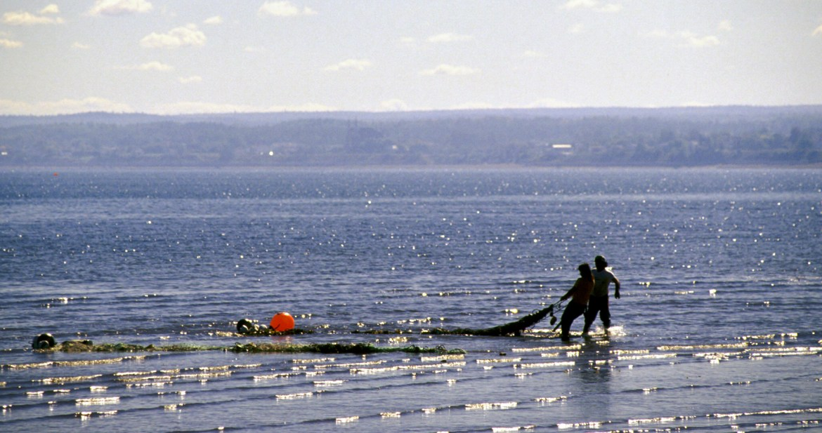 The Assembly of First Nations Knowledge Keepers Council supports the rights of Mi'kmaq people to assert their Treaty Right to Fish within their Territory