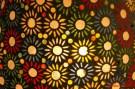 DSC_7003 dettagli di luce floreale - afnews