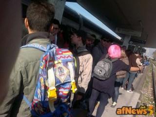 003 Pink-Hair in Viareggio - afnews