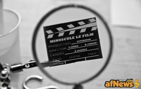 MInus_FF_PhotosShooting_CLAP 2
