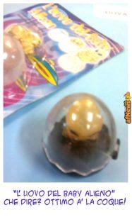 036 uovo-afnews