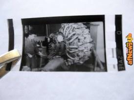 Microfilm_2-afnews