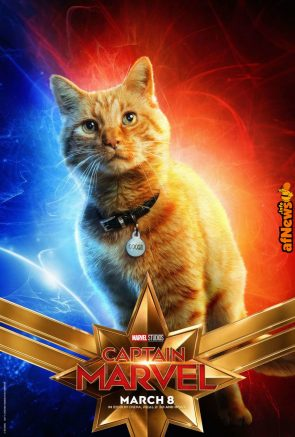 Captain Marvel cat poster-afnews