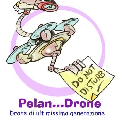 01 Pelan-Drone-1500