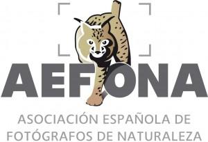 LOGO-AEFONA