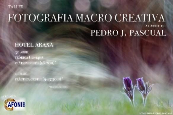 fotografia-macro-creativa