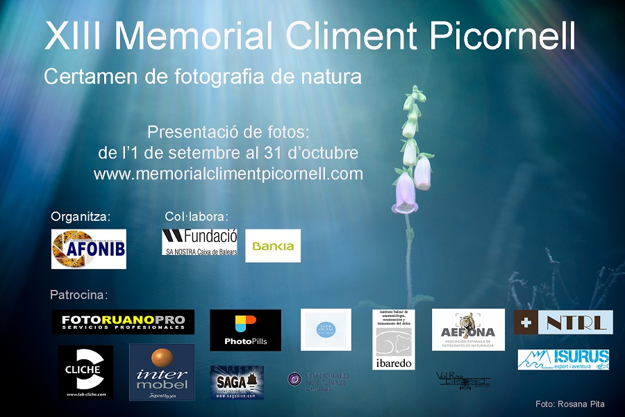XIII MEMORIAL CLIMENT PICORNELL