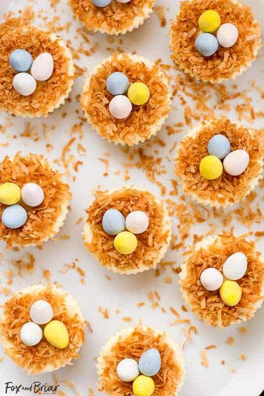 Easter Bird's Nest Mini Cheesecakes from Fox and Briar: Delicious, silky mini cheesecakes, topped with toasted coconut and mini egg candies make a cute and festive dessert! They delicious and easy to make.