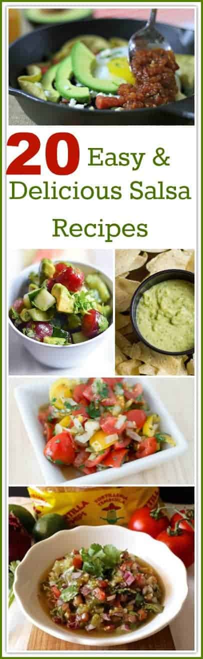 Salsa is the perfect condiment to make for almost any occasion. It is great to eat with chips or as a topping over eggs, potatoes, fish, steak, beans, or chicken! Here are 20 Easy and Delicious Salsa Recipes to create in your kitchen.